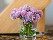 Chive Blossom Vinegar